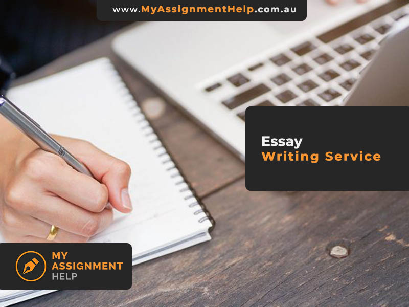 College Paper Writing Service